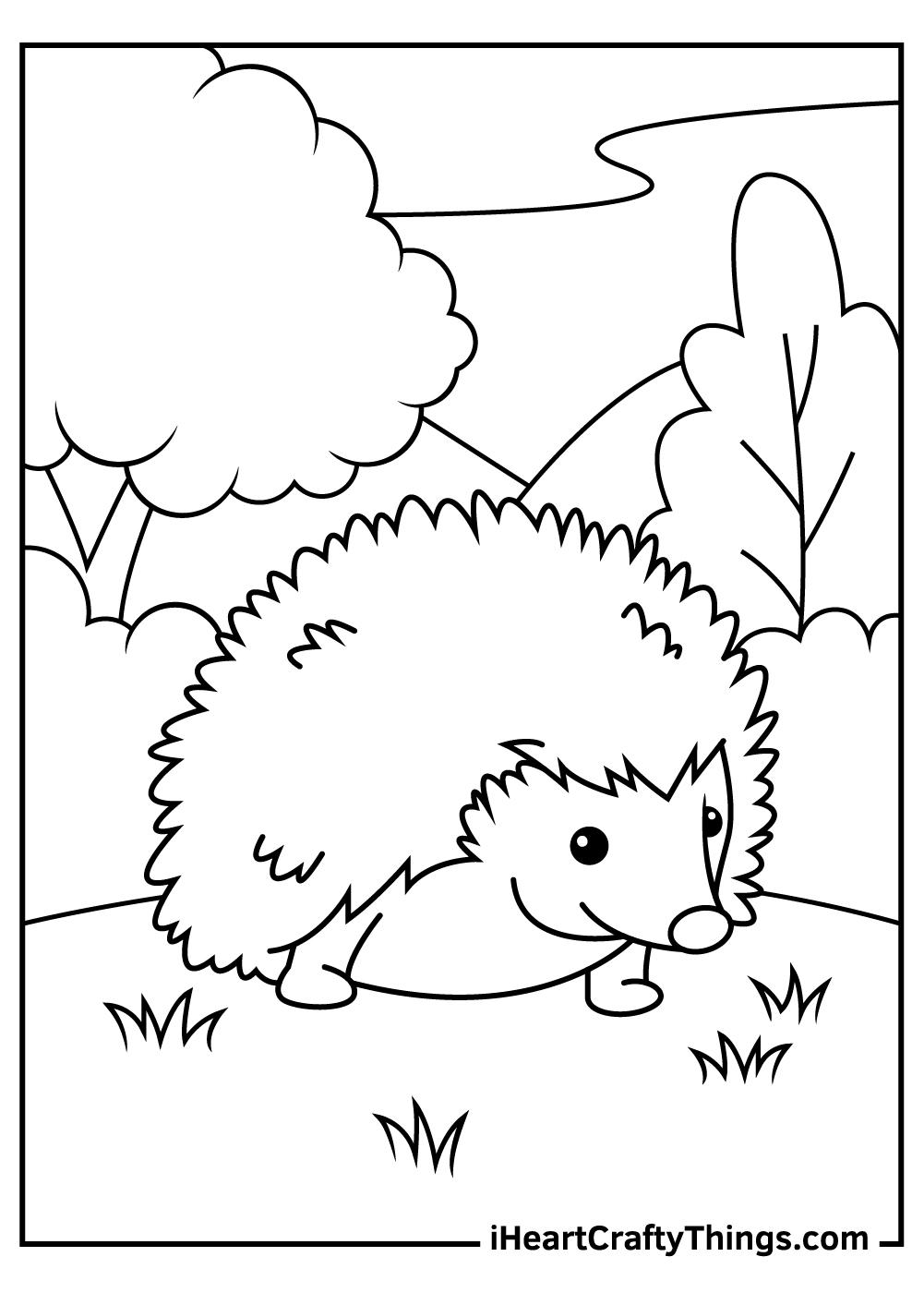 spring hedgehog coloring pages