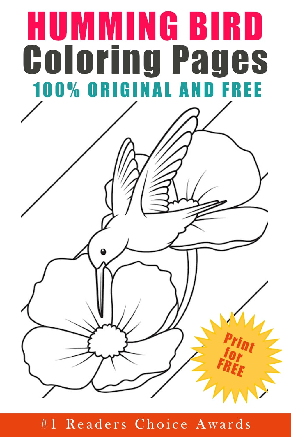 original and free hummingbird coloring pages