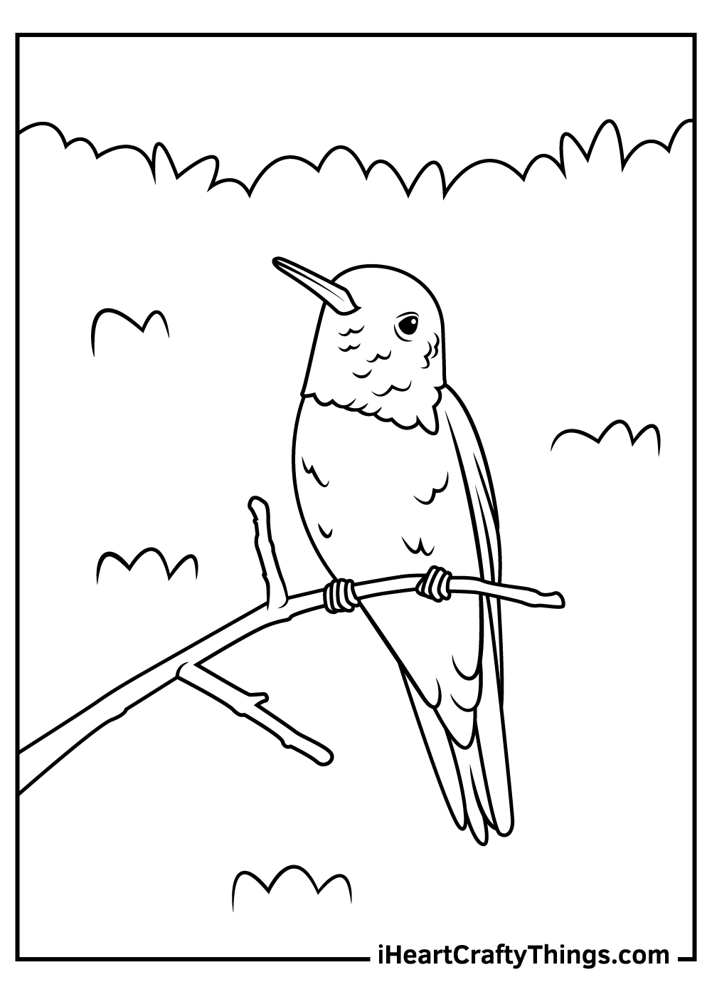 realistic hummingbird coloring pages free printable
