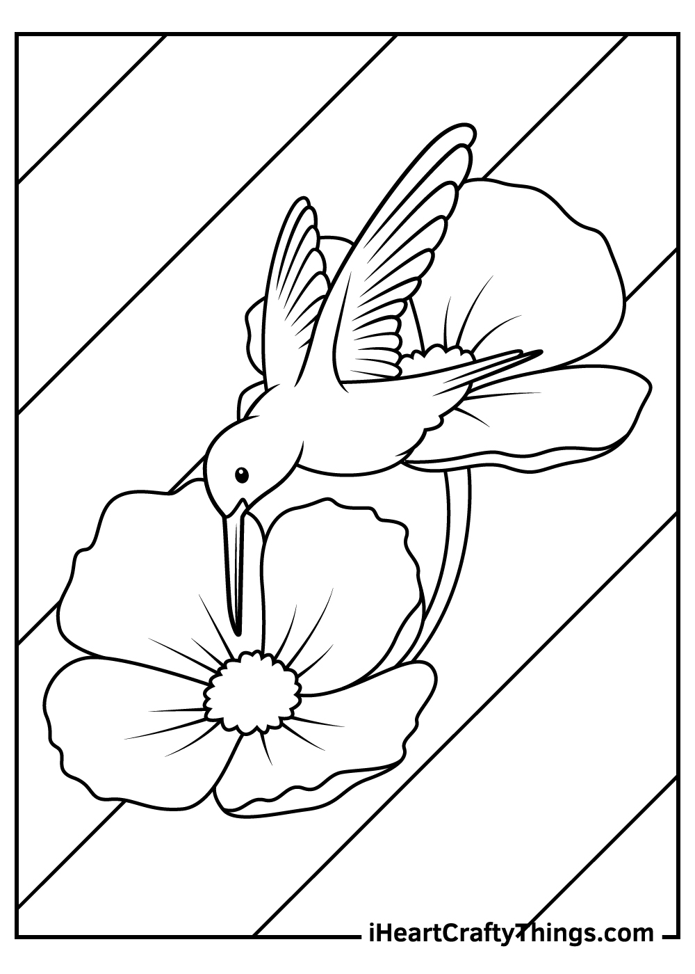 easy hummingbird coloring pages for kids