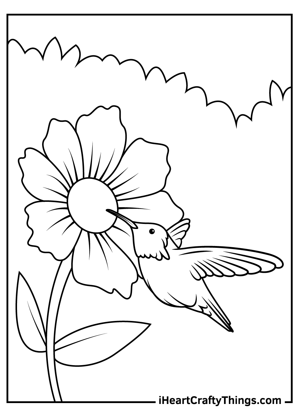 cute hummingbird coloring pages free download