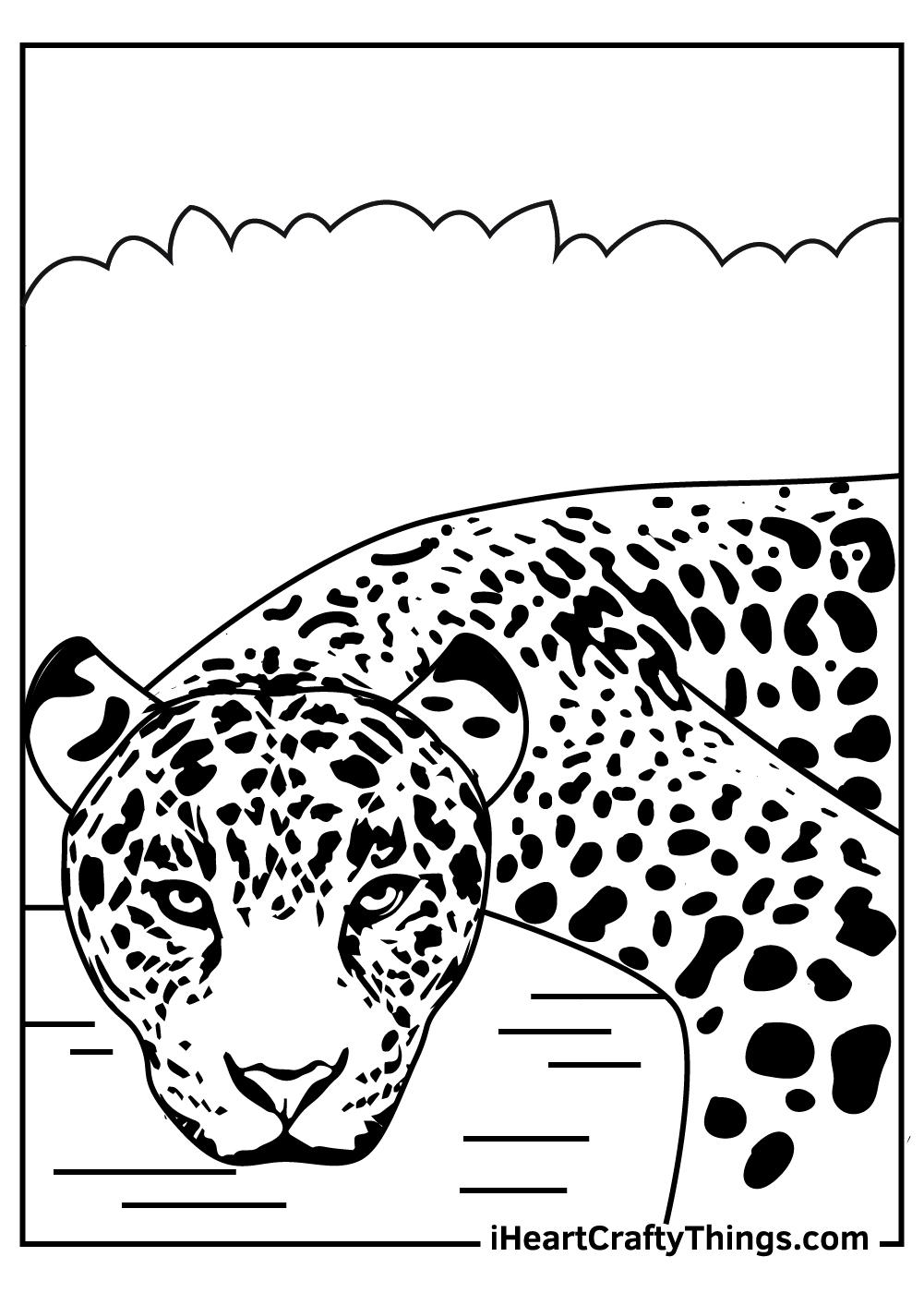 jaguar head coloring pages free printables