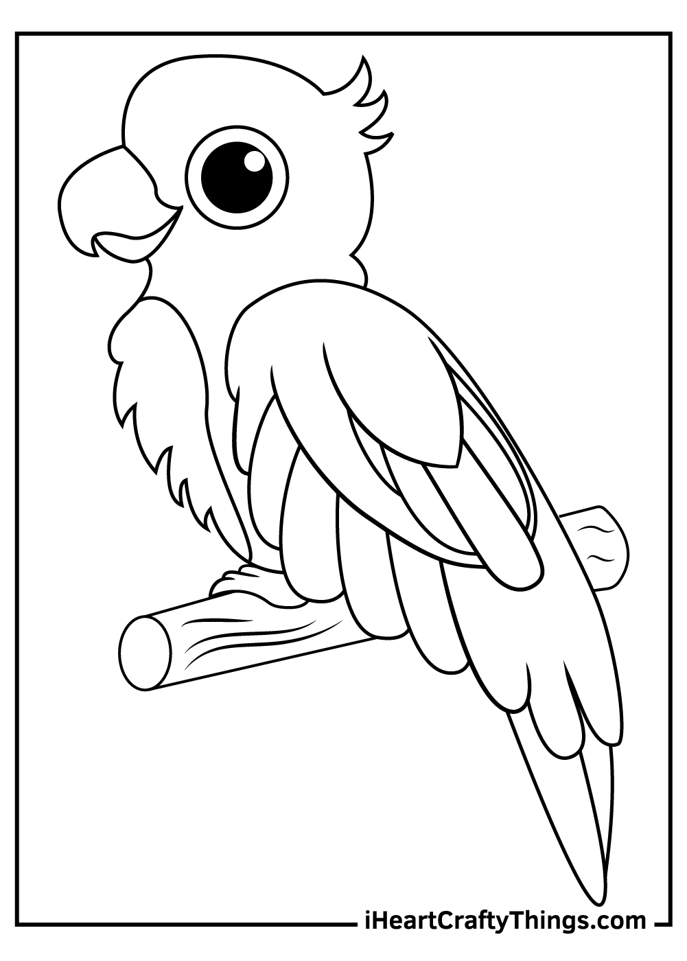 cute parrots coloring pages free printable