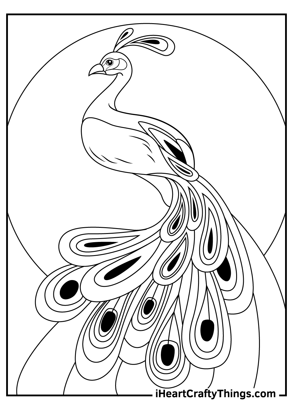 free realistic peacock coloring pages
