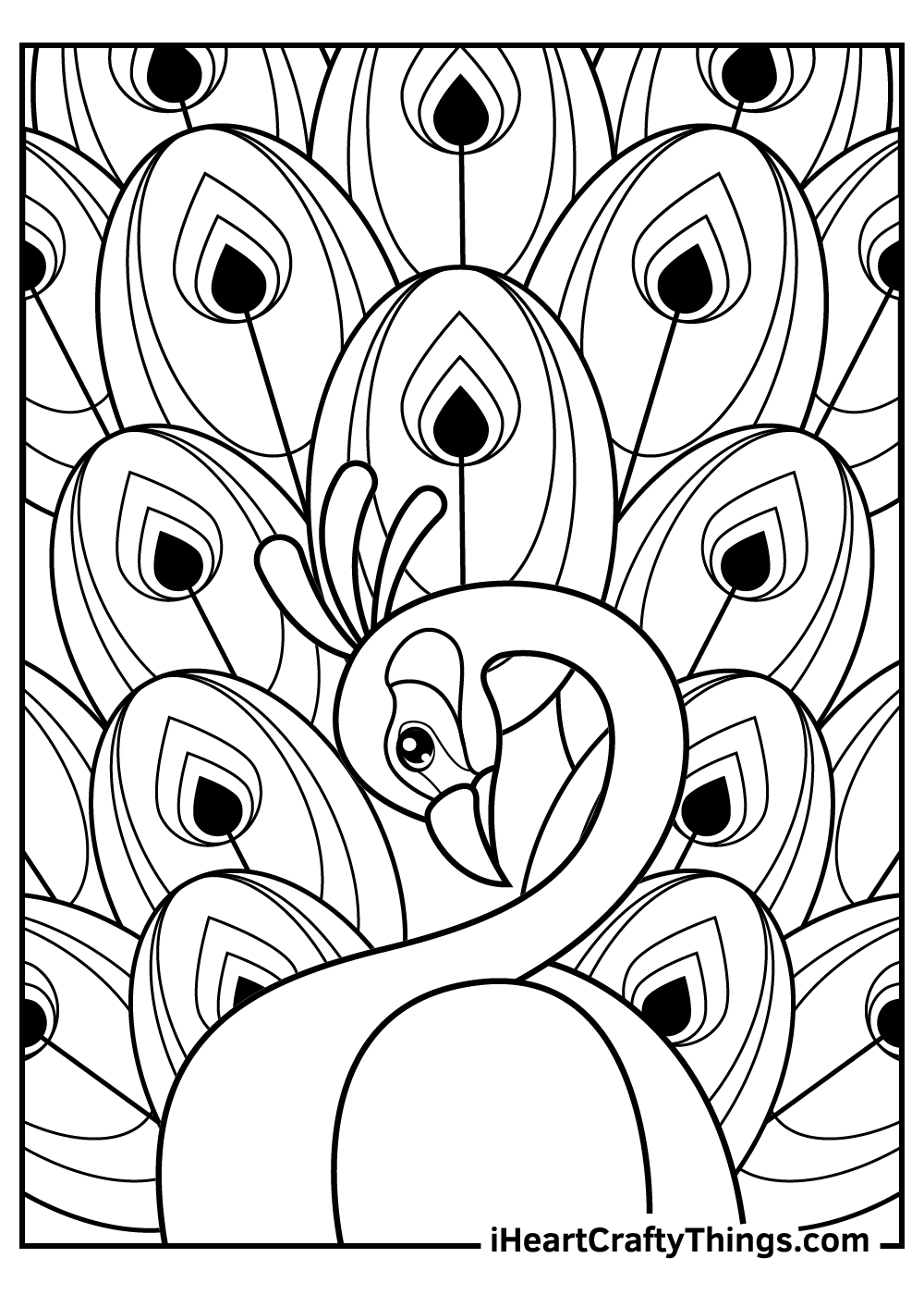 beautiful peacock coloring pages printable