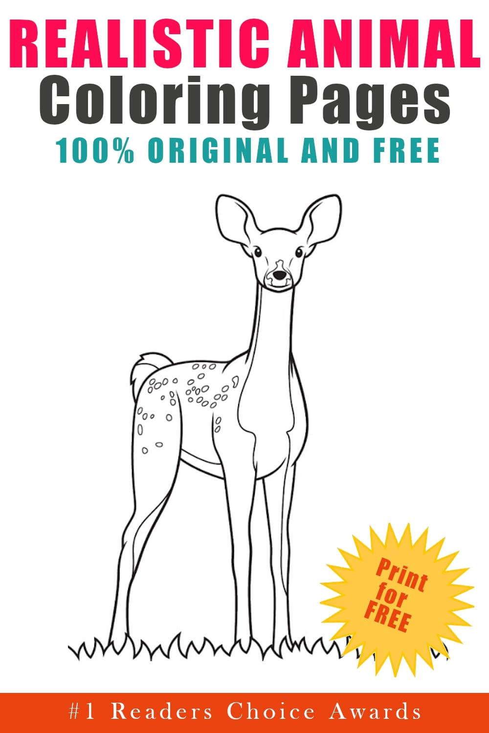 original and free realistic animal coloring pages