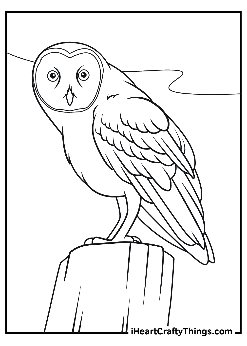 free printable realistic owl coloring pages