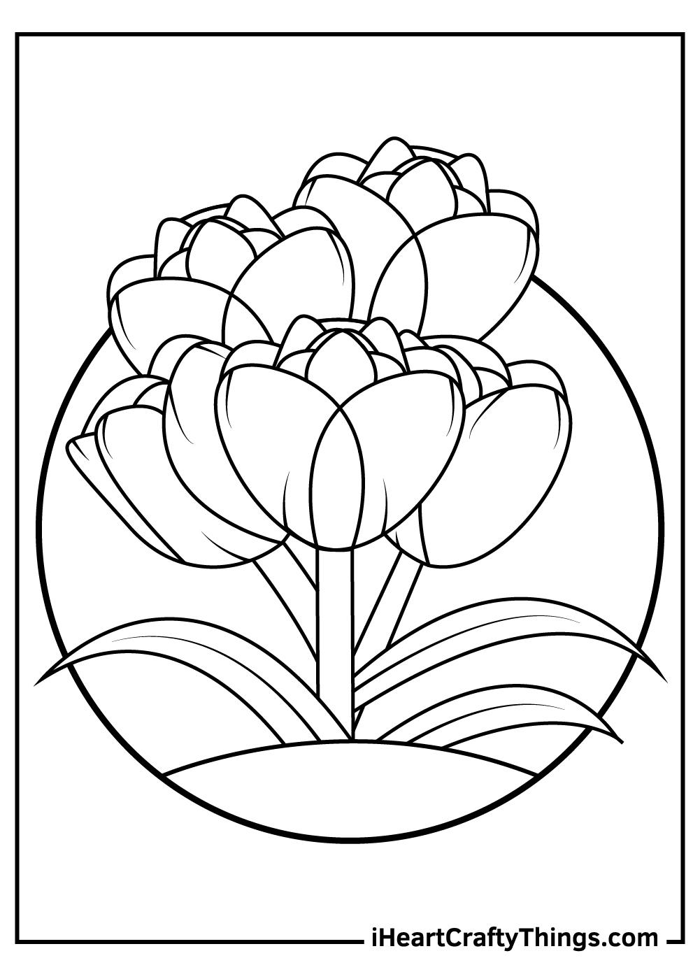 black and white free tulip pdf sheets