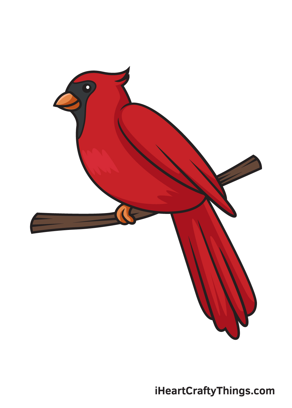 cardinal drawing 9 steps
