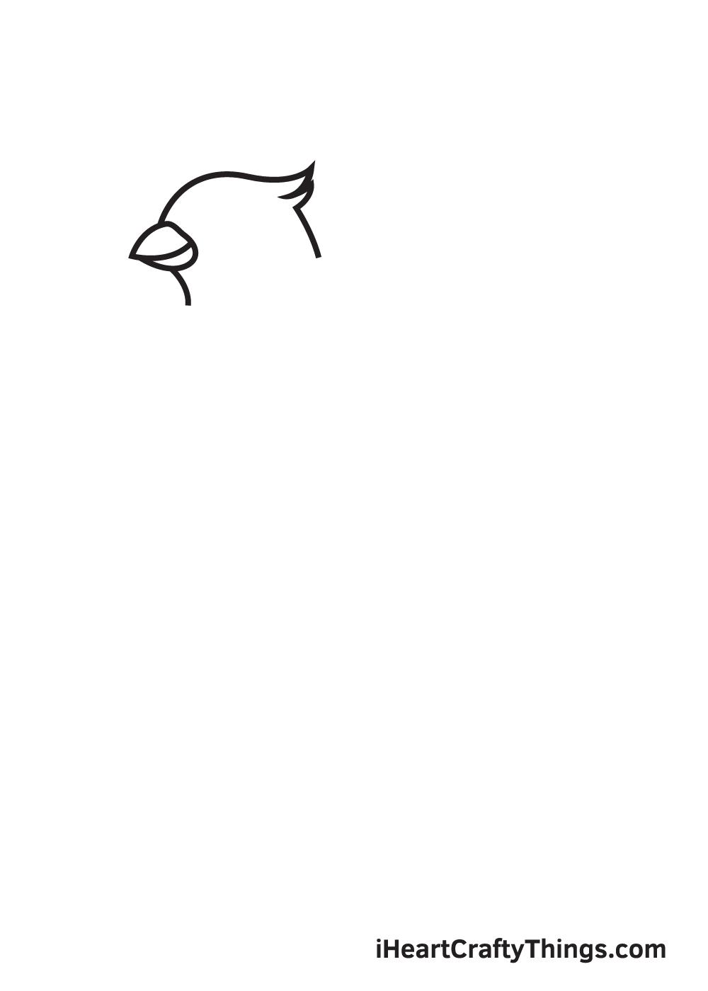 cardinal drawing step 2
