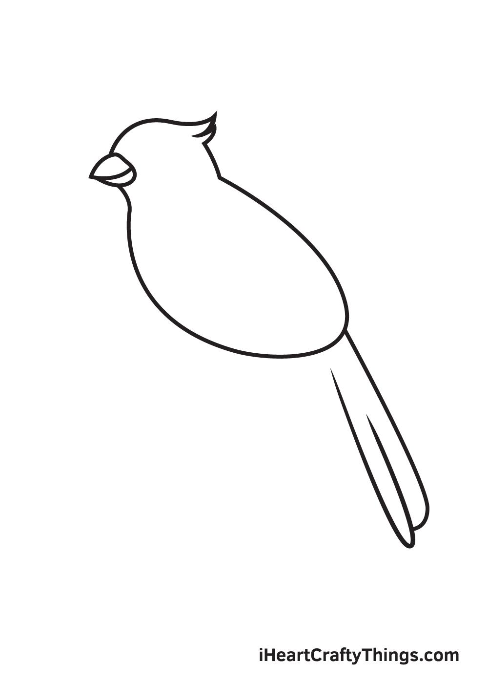 cardinal drawing step 4