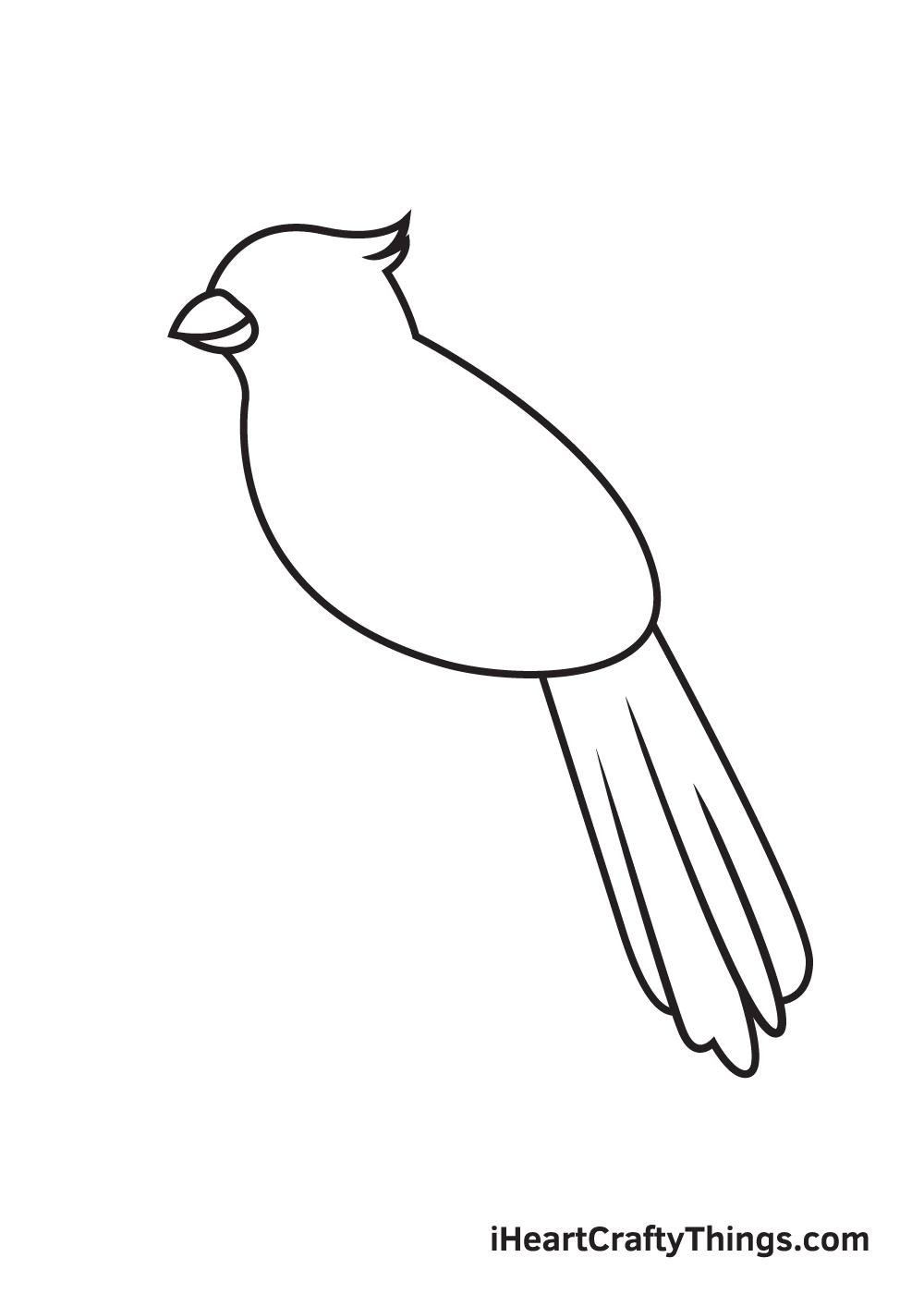 cardinal drawing step 5