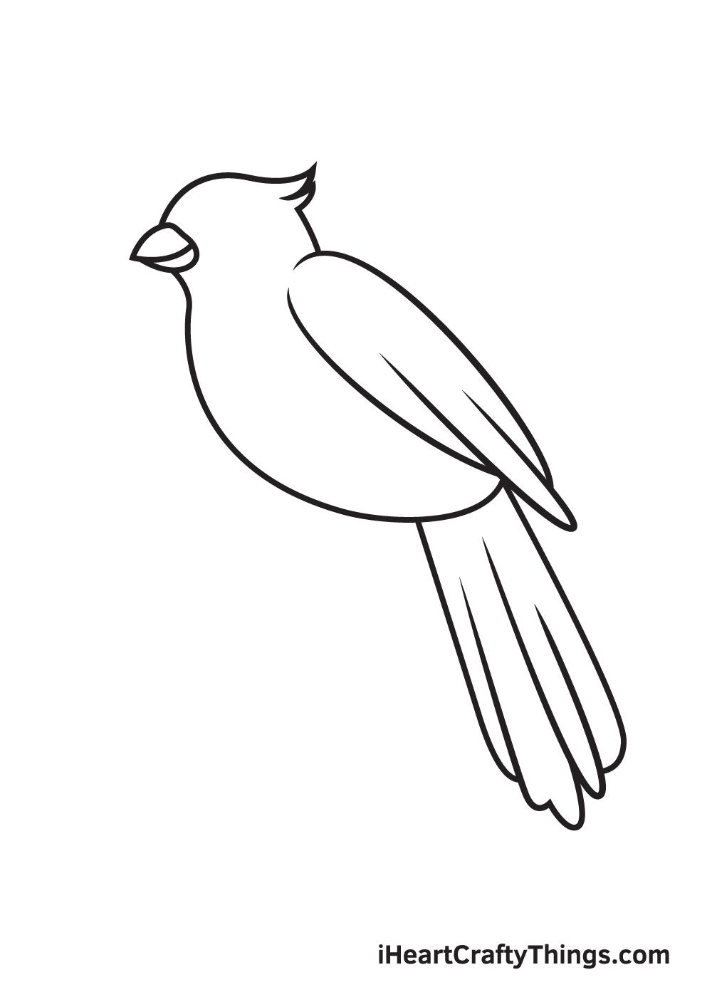 cardinal drawing step 6