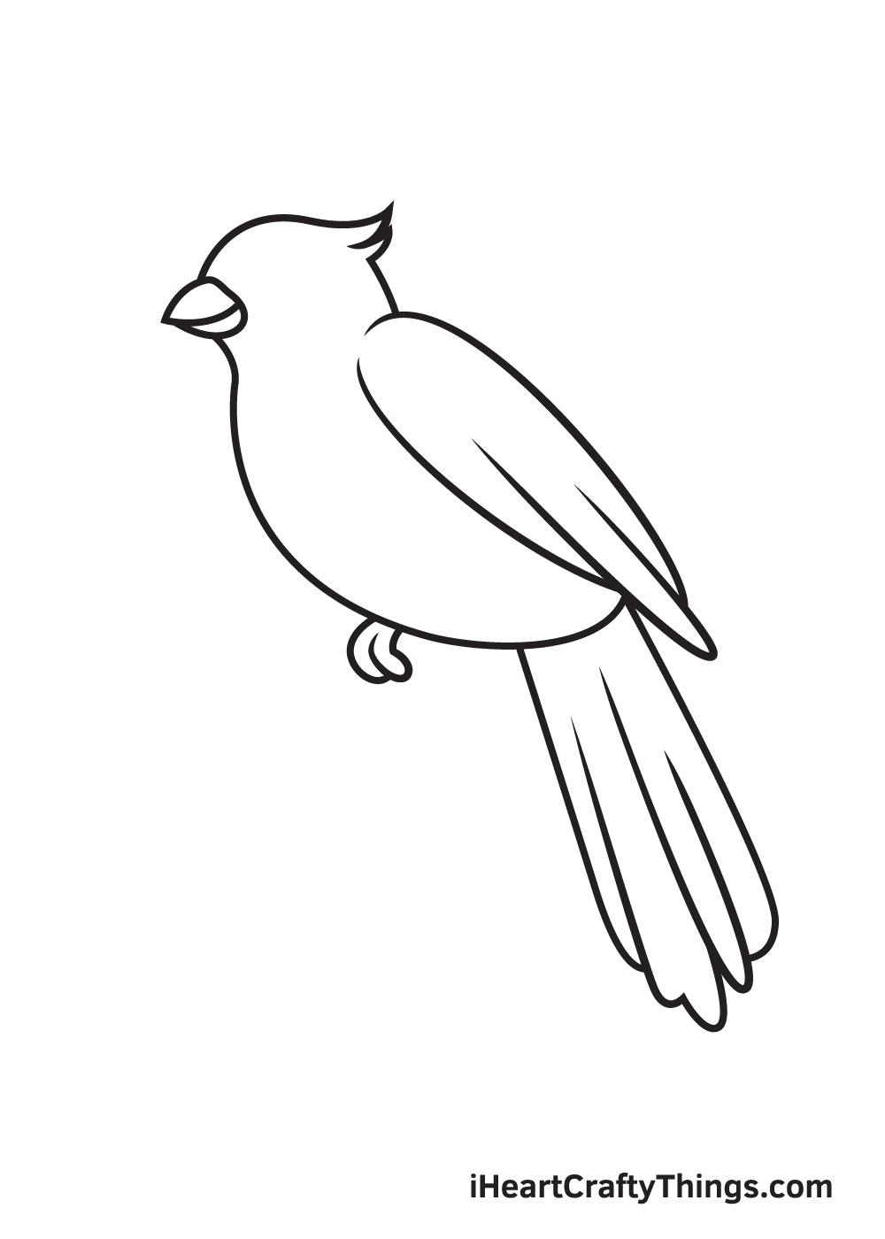 cardinal drawing step 7