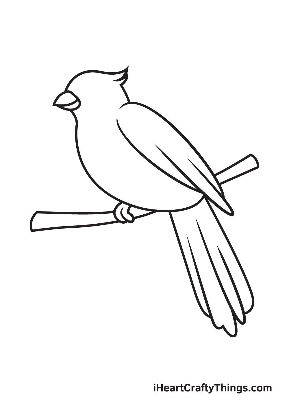 cardinal drawing step 8