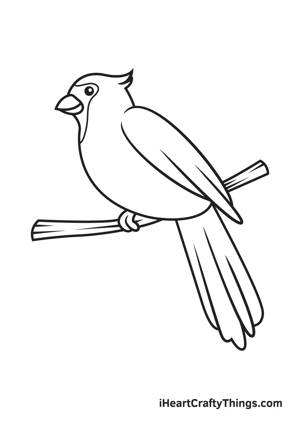 cardinal drawing step 9