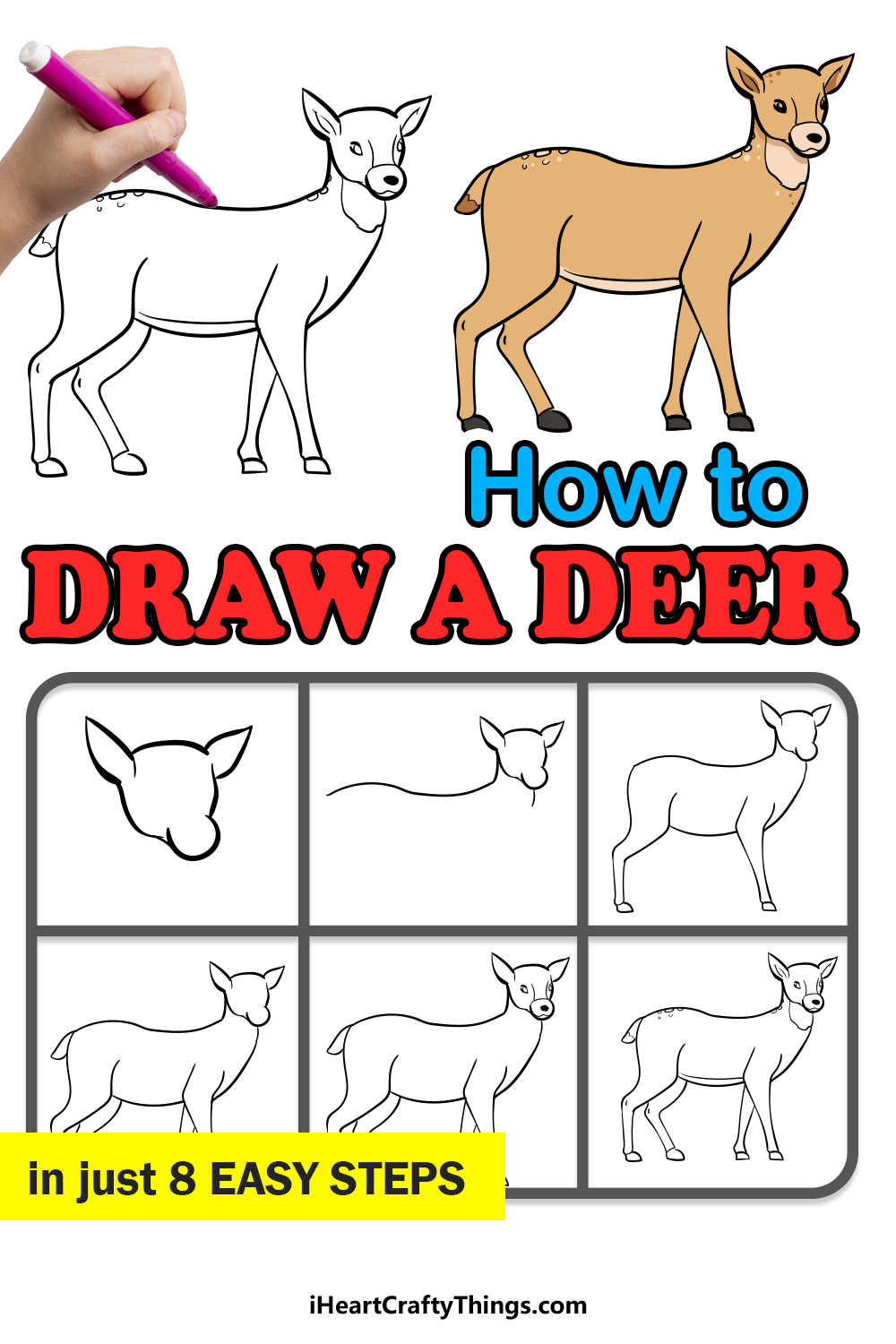 how to draw a deer in 8 easy steps