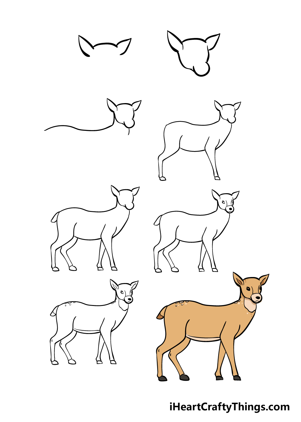 how to draw deer in 8 steps