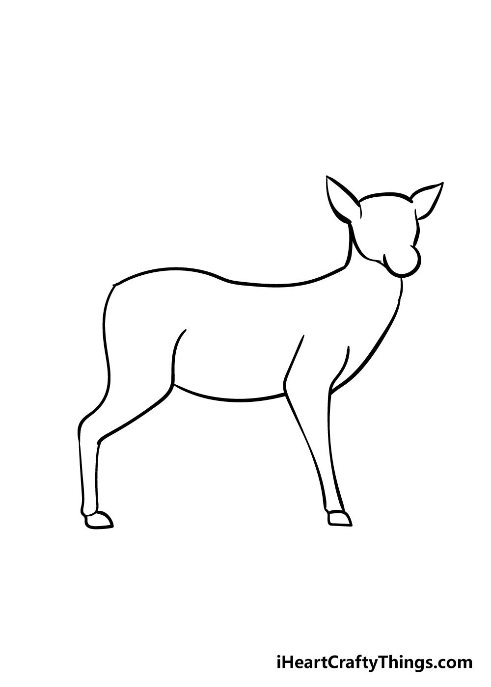drawing deer step 4