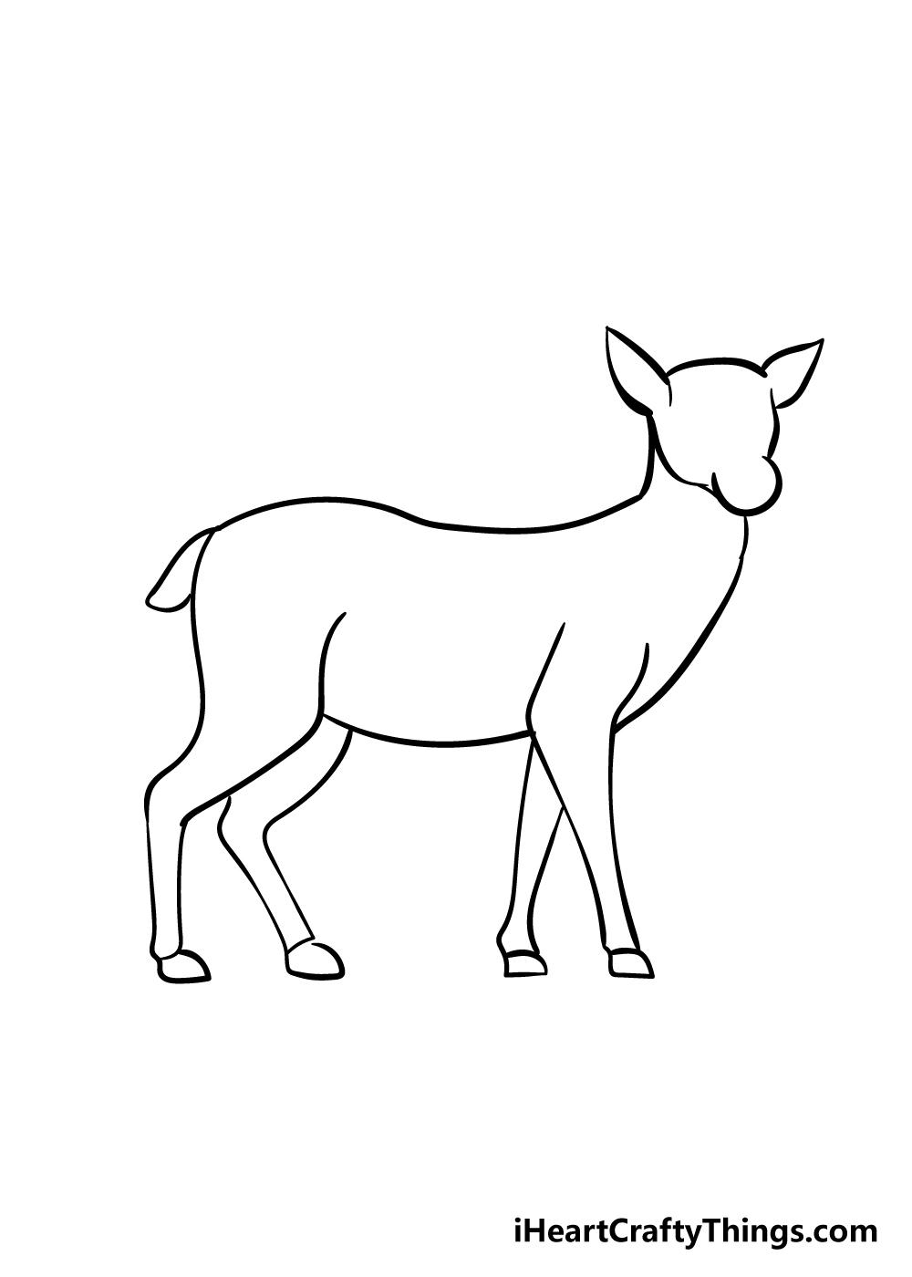 drawing deer step 5