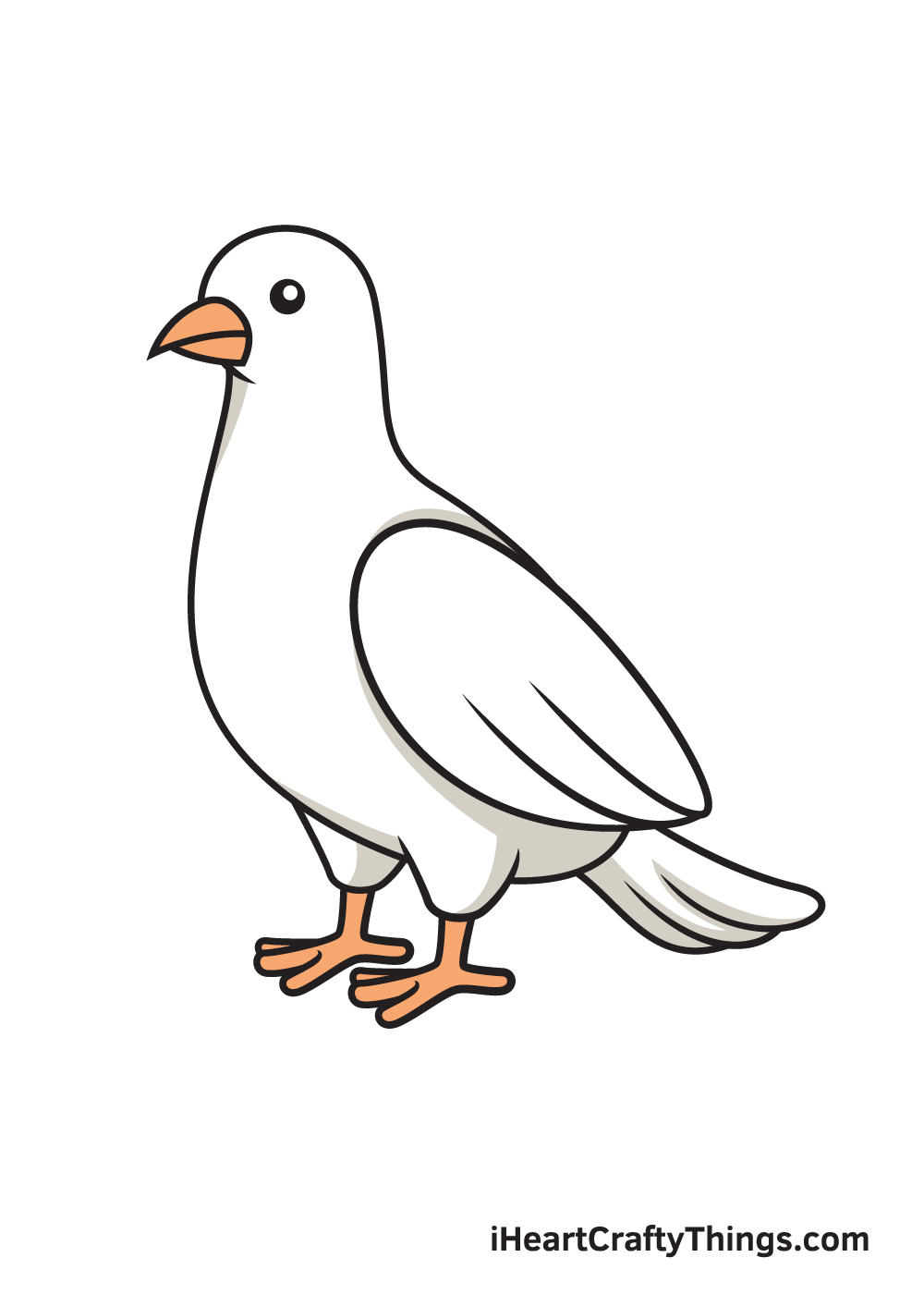 dove drawing 9 steps
