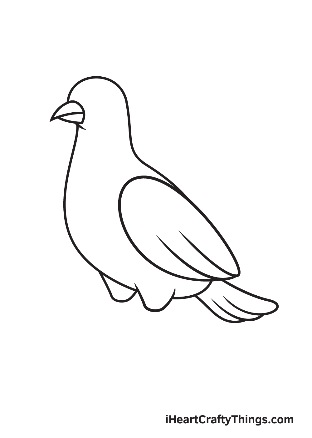 dove drawing step 7