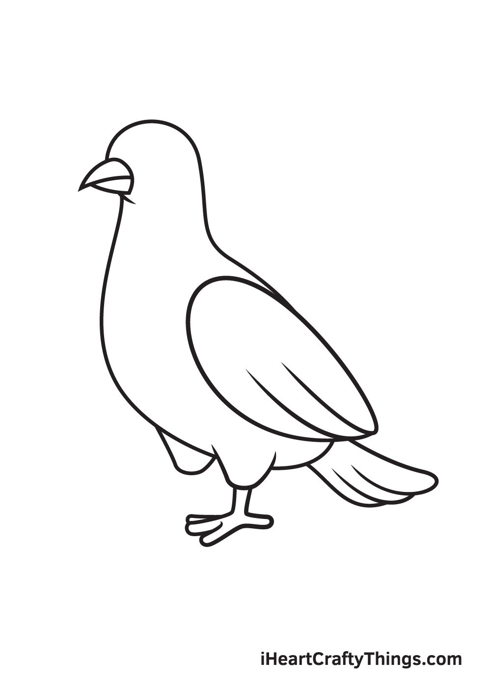 dove drawing step 8