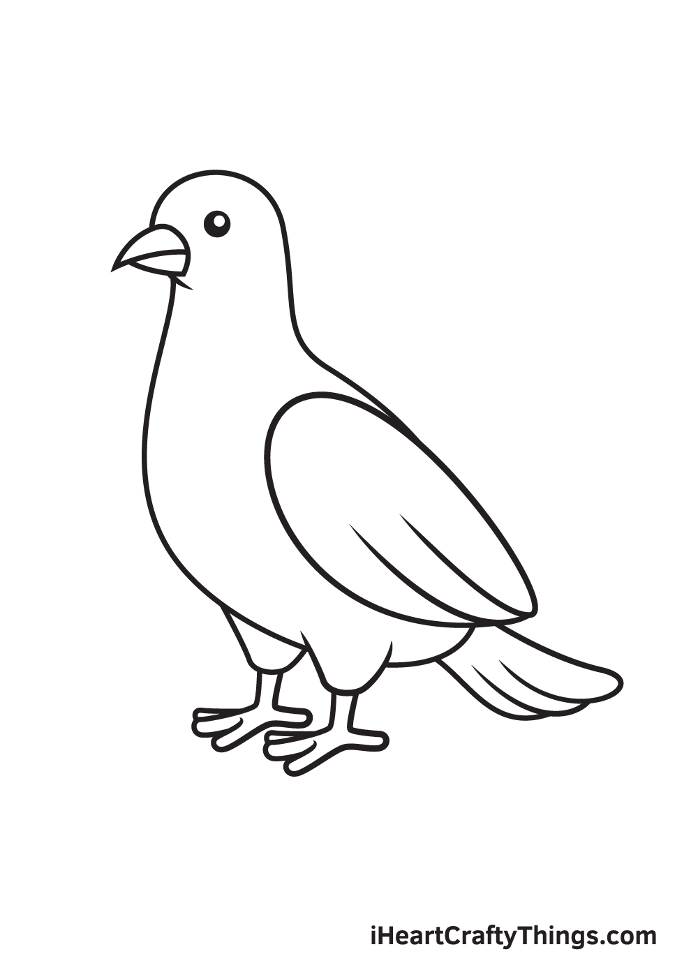 dove drawing step 9
