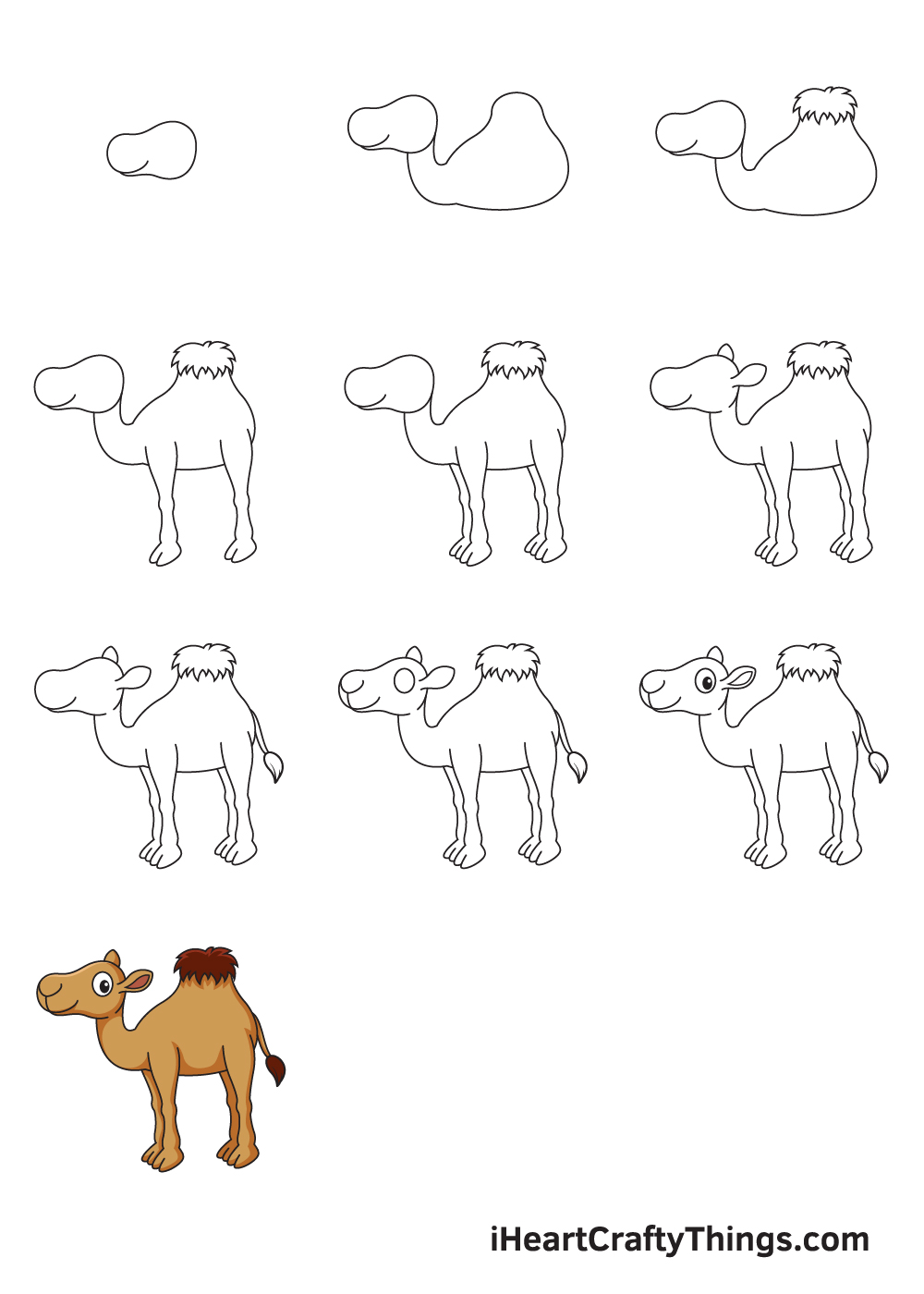 drawing camel in 9 easy steps