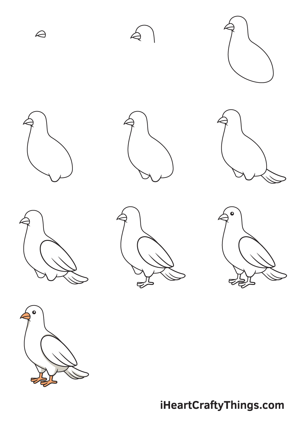 drawing dove in 9 easy steps