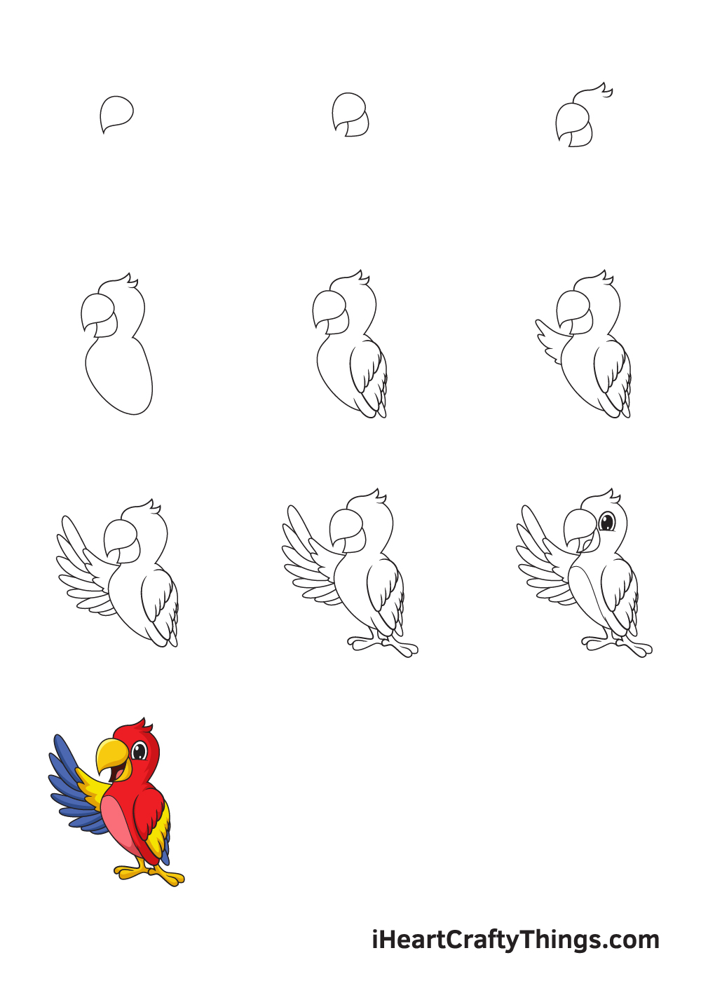 drawing parrot in 9 easy steps