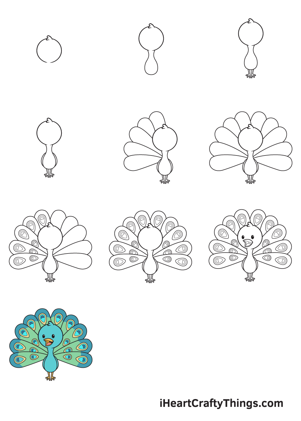 drawing peacock in 9 easy steps
