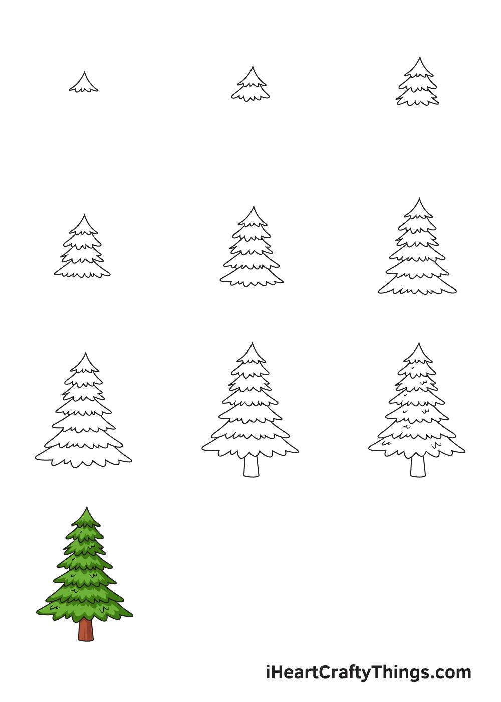 drawing pine tree in 9 steps