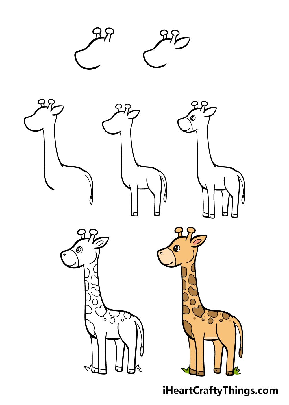 how to draw giraffe in 7 steps