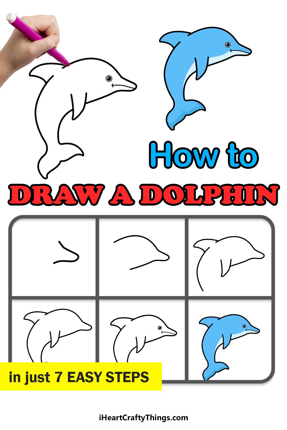 how to draw a dolphin in 7 easy steps