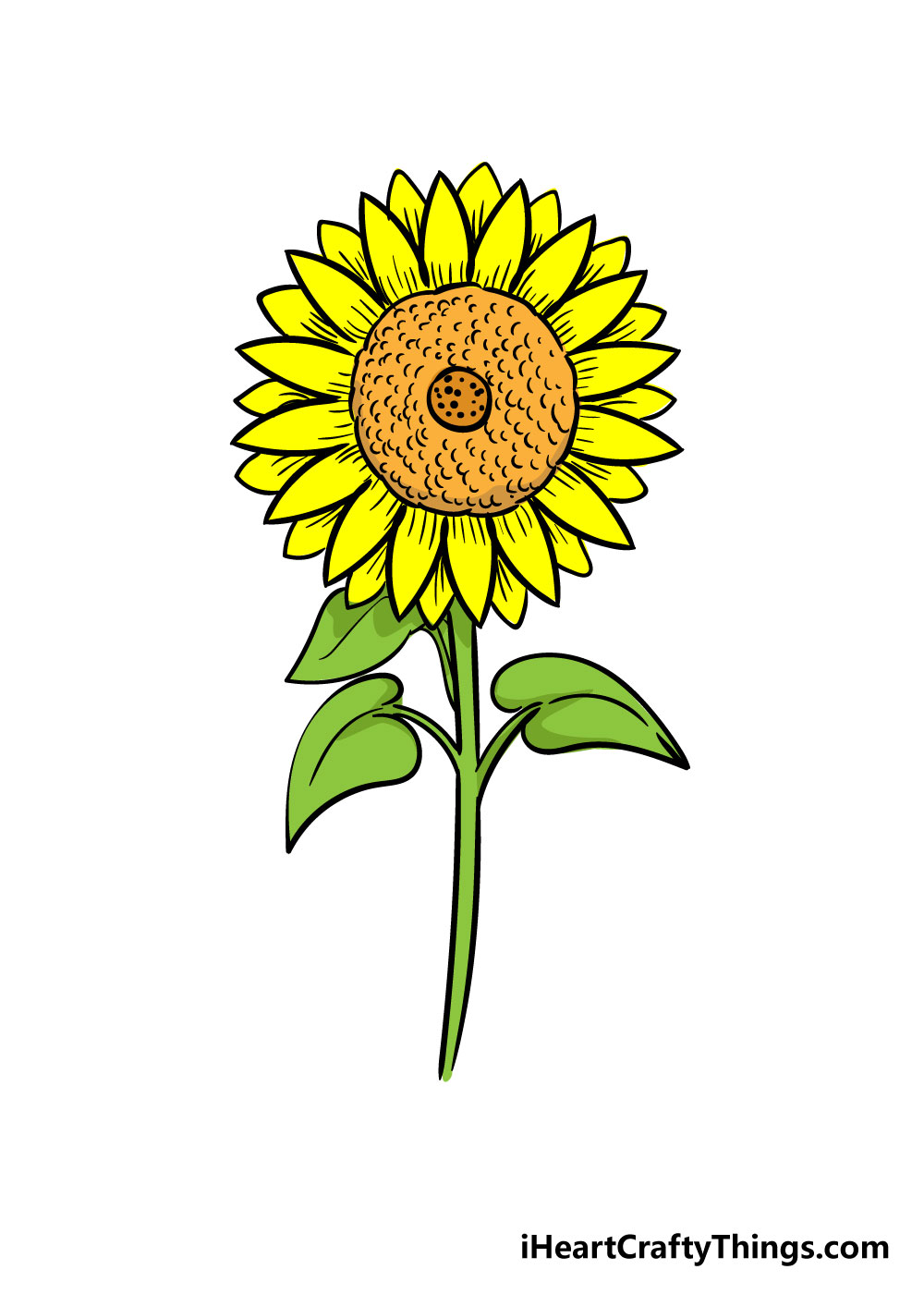 sunflower drawing step 10