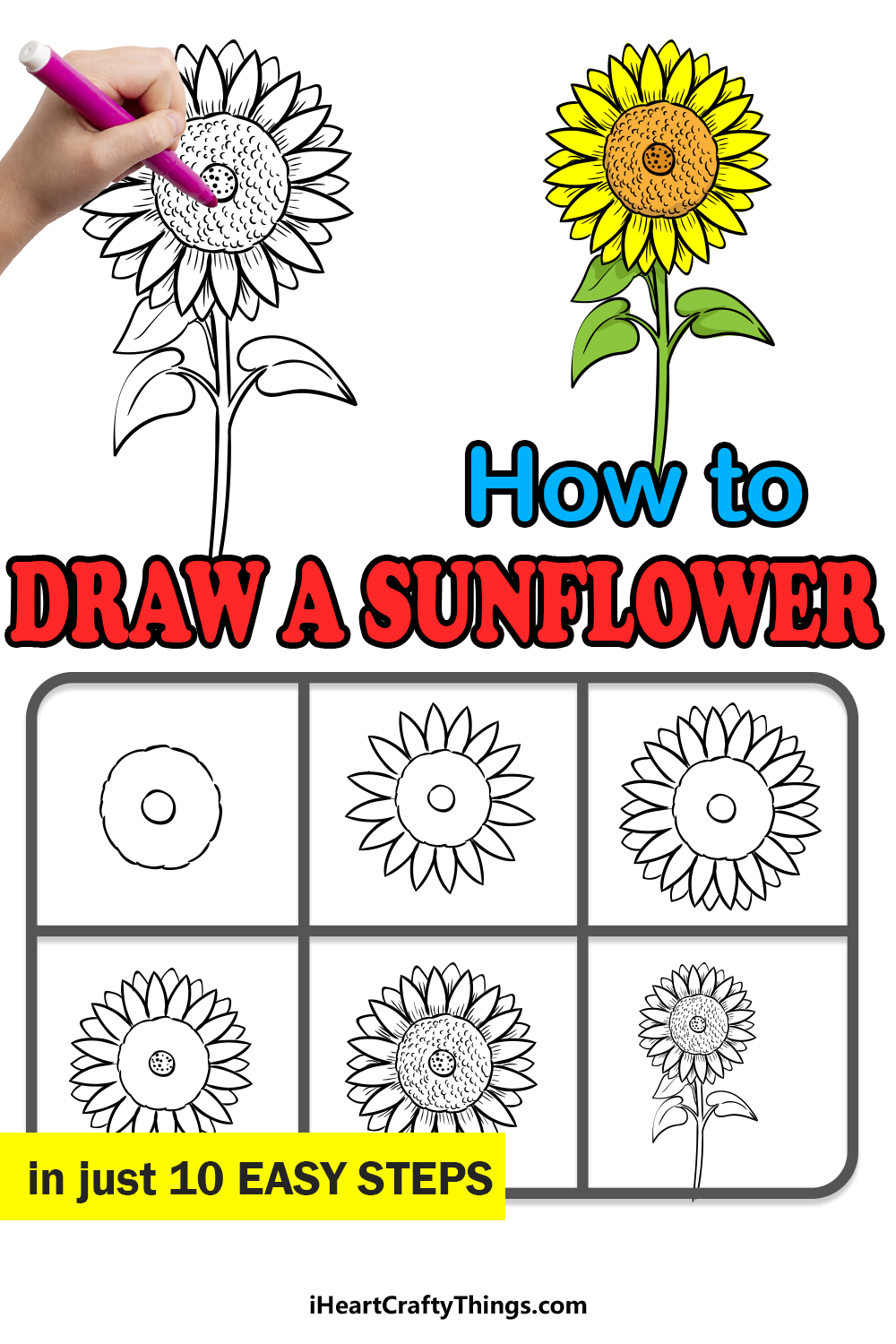 how to draw a sunflower in 10 easy steps