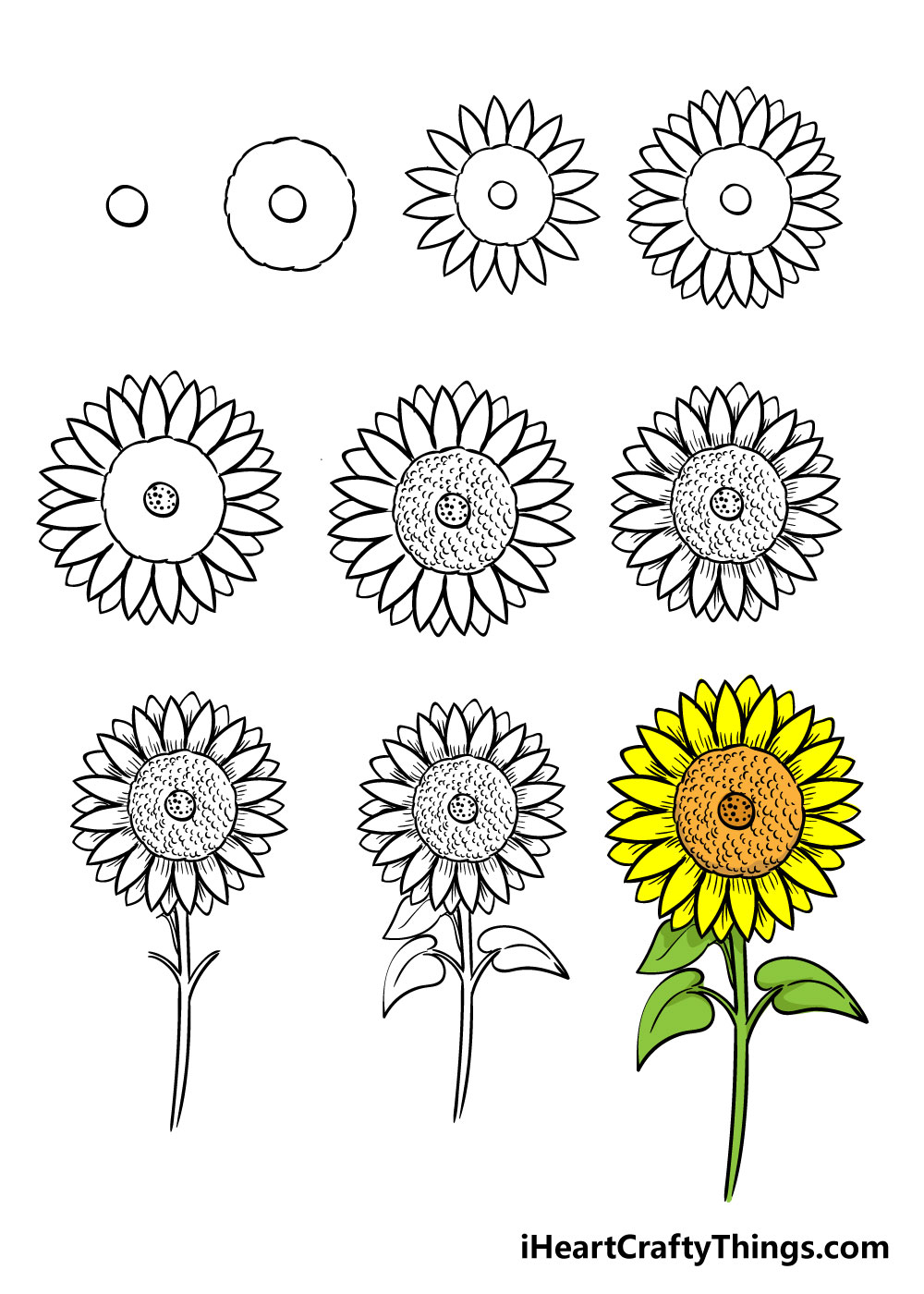 how to draw sunflower in 10 steps