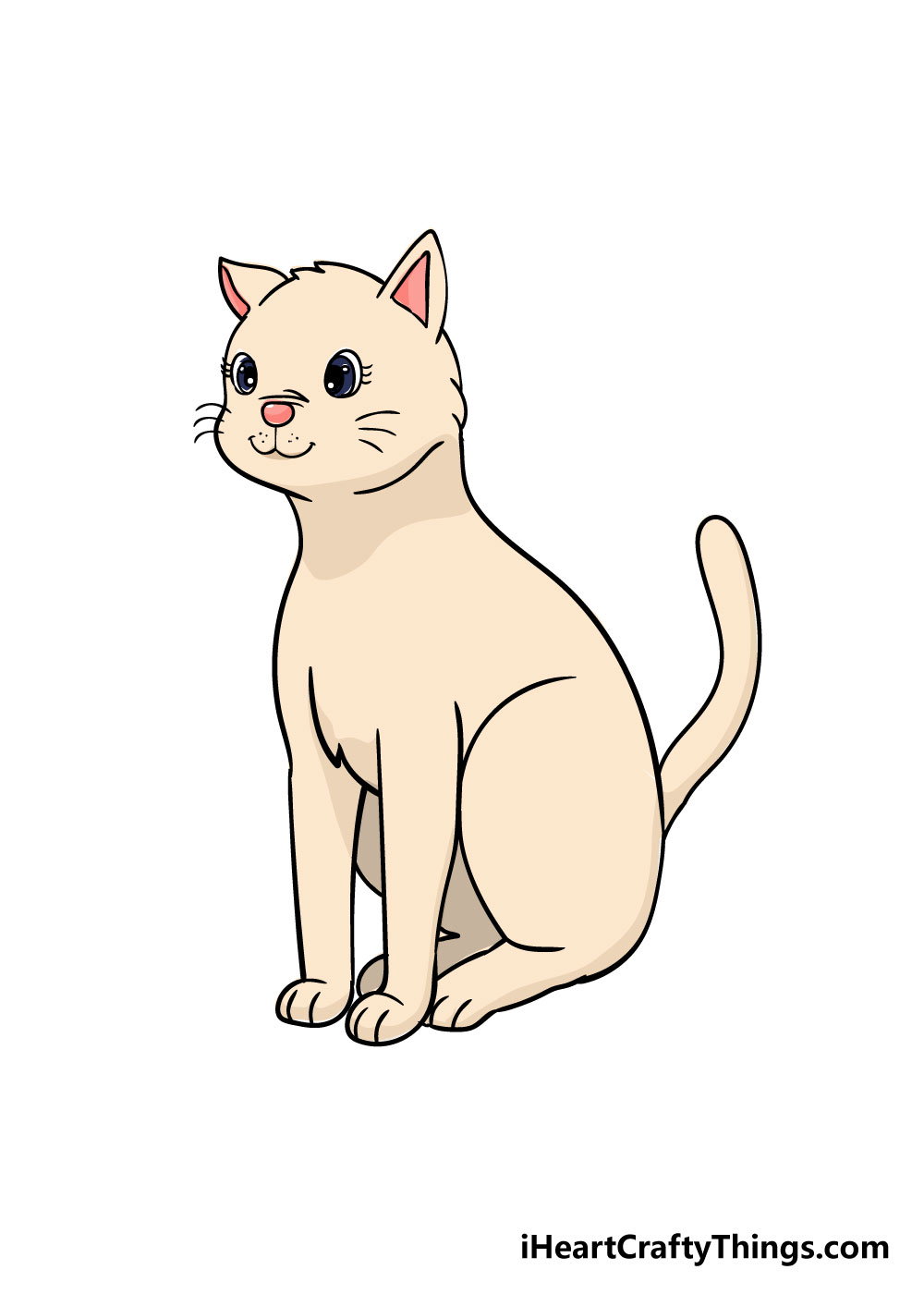cat drawing step 9