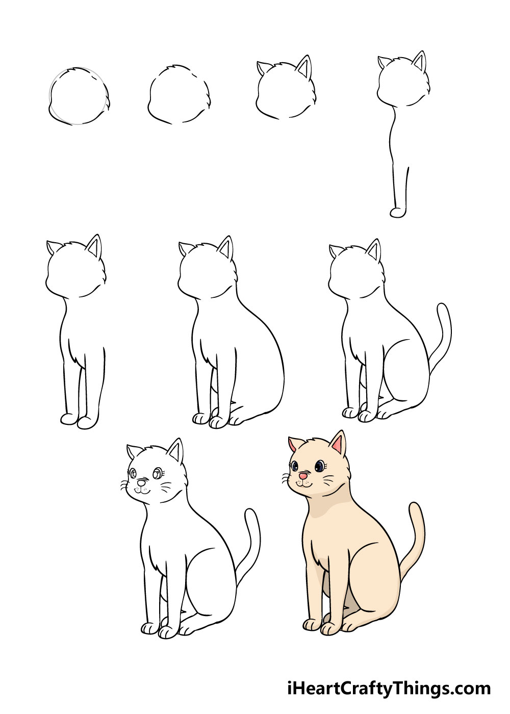 How to draw cat in 9 steps