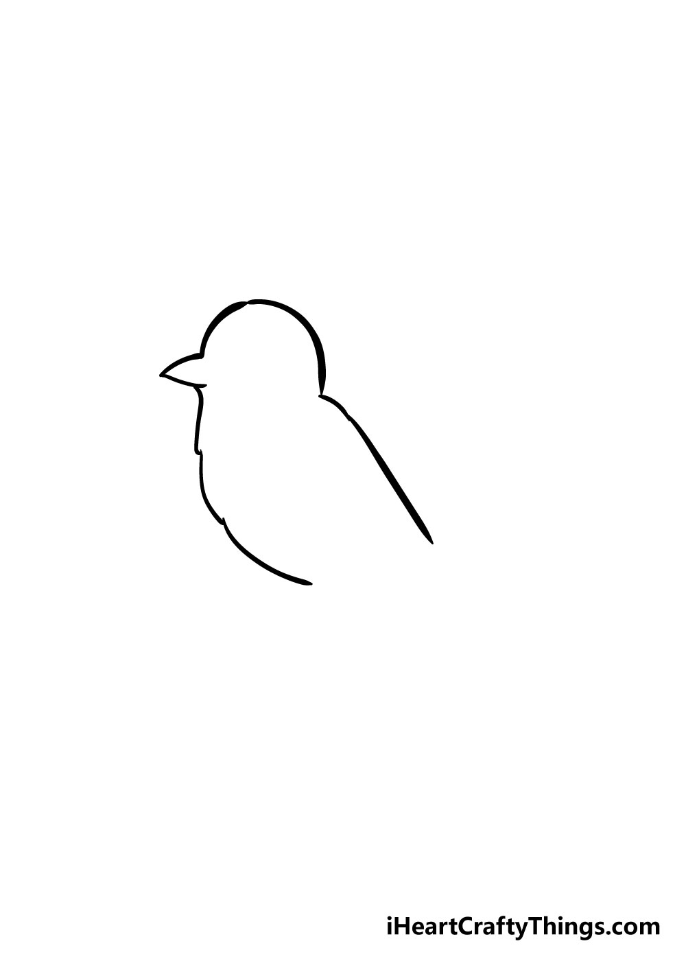 bird drawing step 2