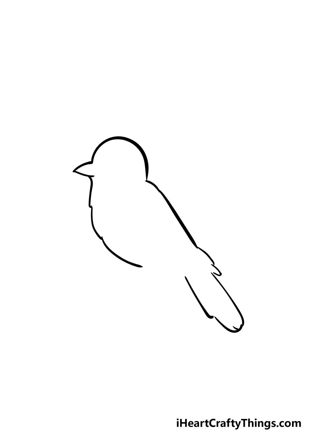 bird drawing step 3
