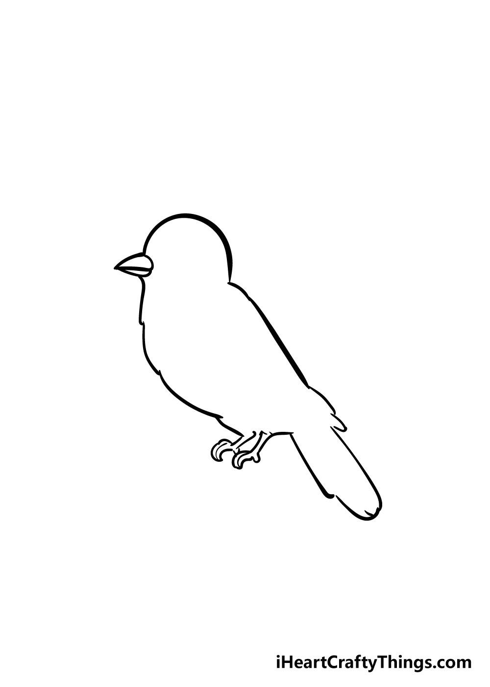 bird drawing step 4