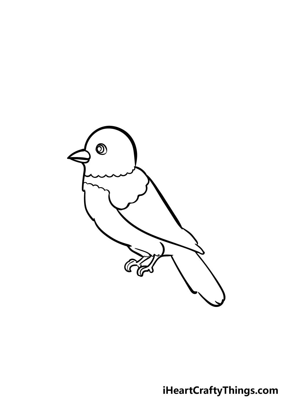 bird drawing step 5