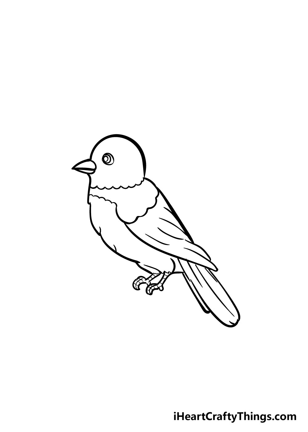 bird drawing step 7