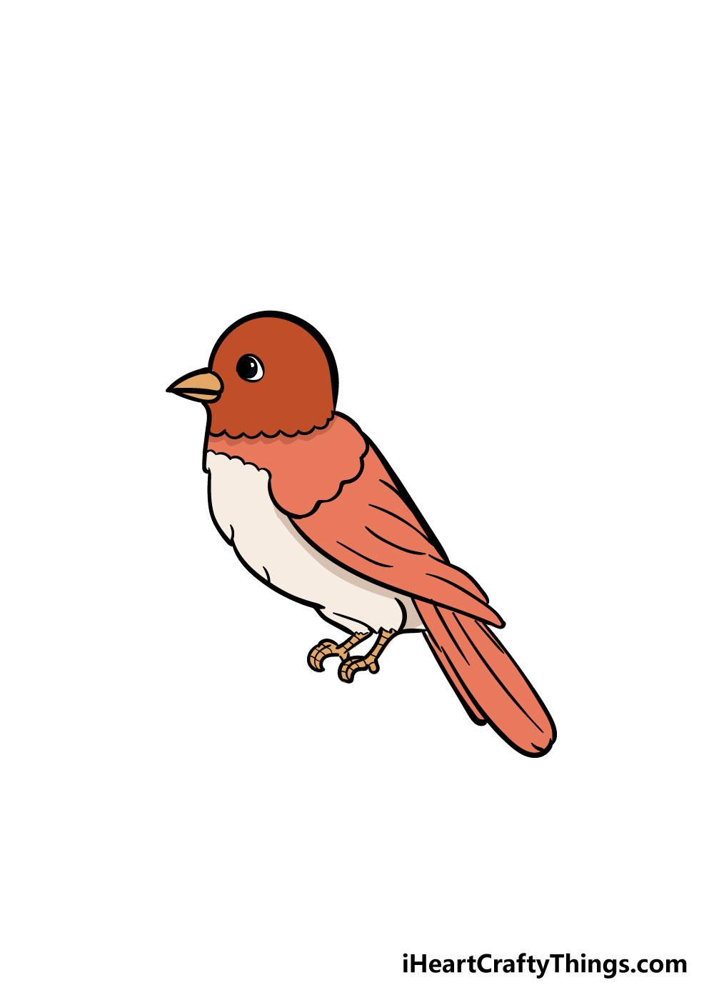 bird drawing step 8
