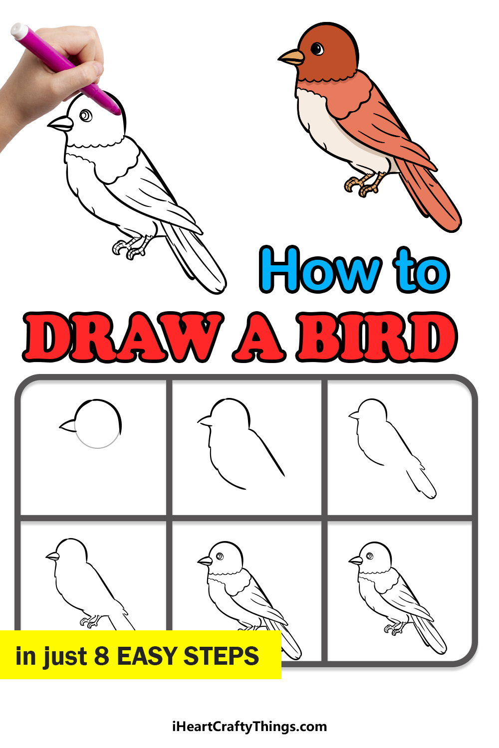 how to draw a bird in 8 easy steps