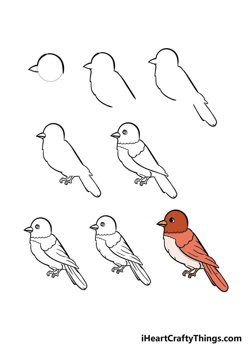 how to draw bird in 8 steps