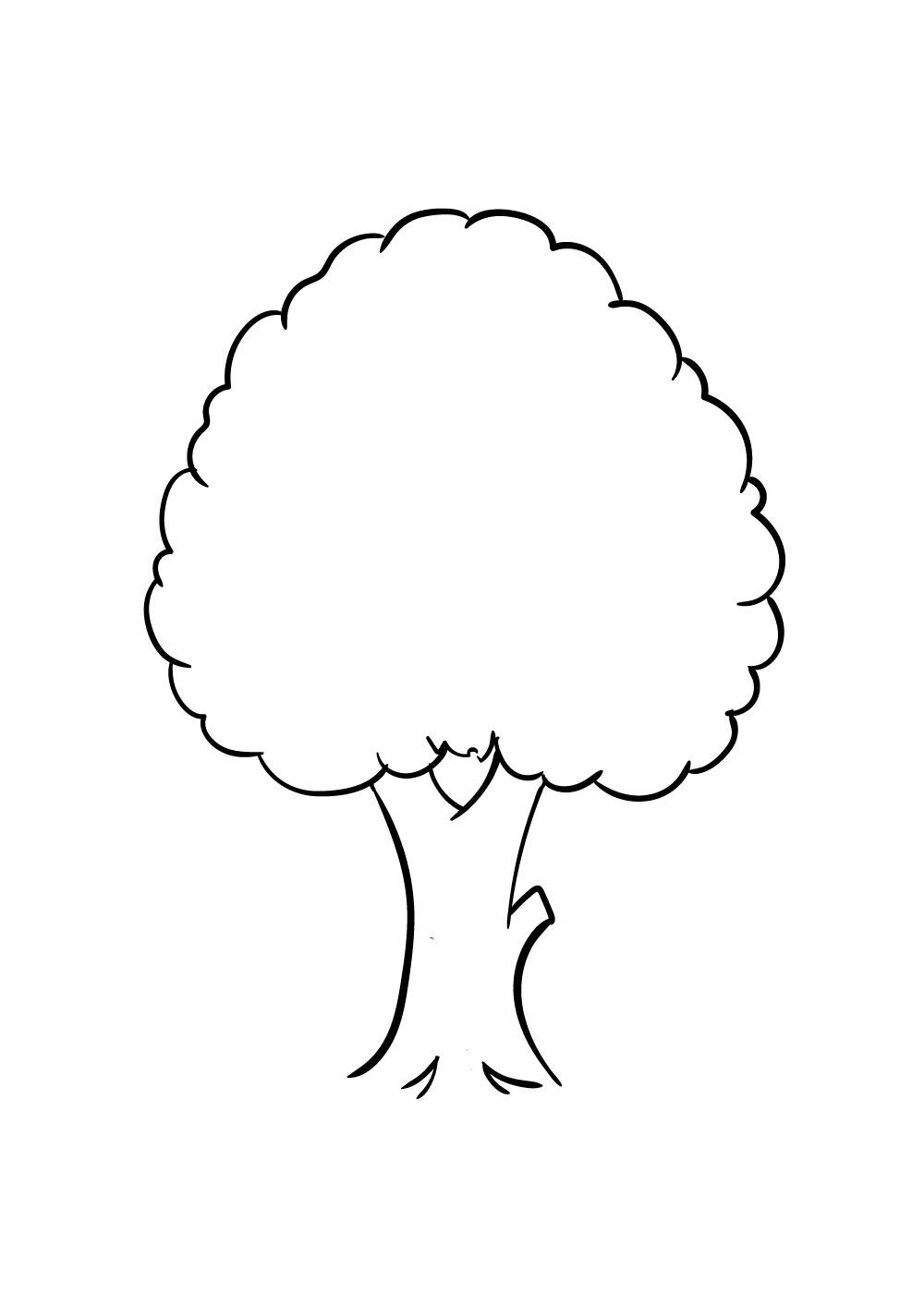 vẽ cây bước 4