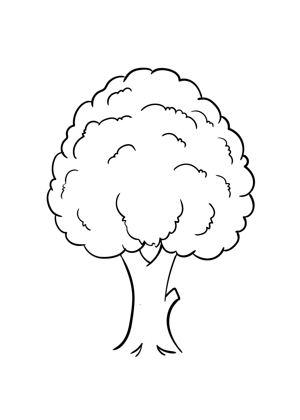vẽ cây bước 5
